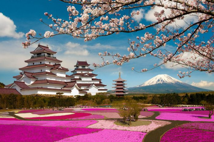 5 Lake of Fuji San